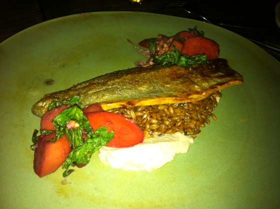The Trout from the Alps! :)